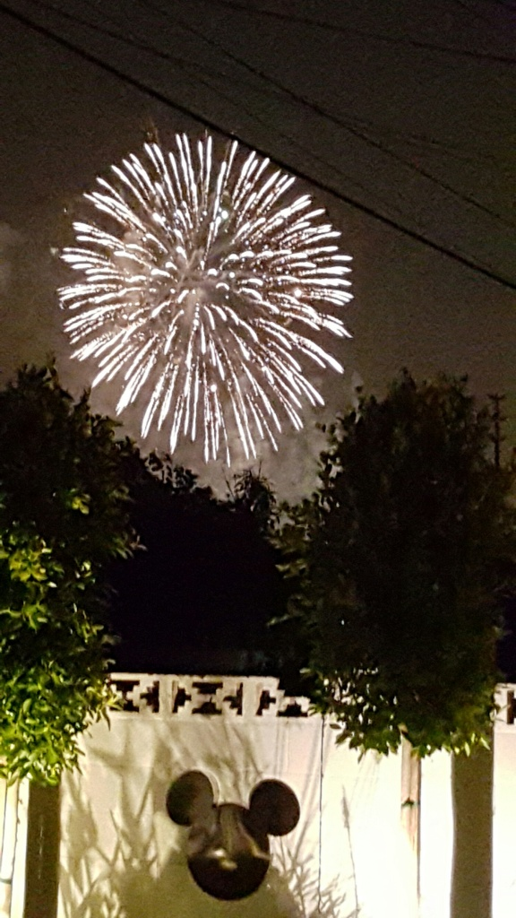 Tired of walking around the parks, but don't want to miss the fireworks? We didn't have to. This was the view from the back patio / pool area. The homeowner even provided a CD/CD player with the fireworks music so we could listen along.