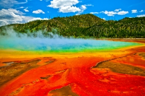 Have a 4th grader? You could visit national parks like Yellowstone for free until August 31, 2016.