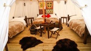 (C) Image courtesy of Warwick Castle