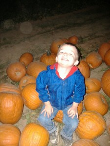 Fall in Phoenix? Visit Schnepf Farms Pumpkin and Chili Party