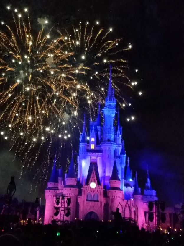 Why You Should Use a Travel Agent for Your Disney Vacation